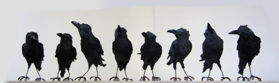 a-murder-of-crows